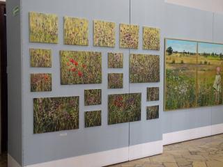 Kołobrzeg Atrakcja Galeria Galeria Sztuki Współczesnej