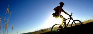 Kołobrzeg Atrakcja Wypożyczalnia rowerów Tonio